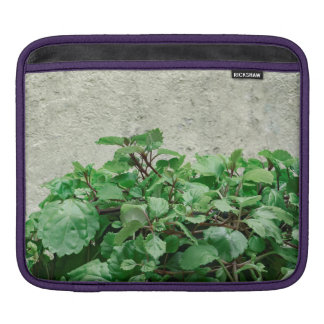 Green Plants Against Concrete Wall iPad Sleeve
