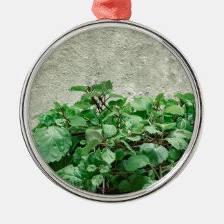 Green Plants Against Concrete Wall Metal Ornament