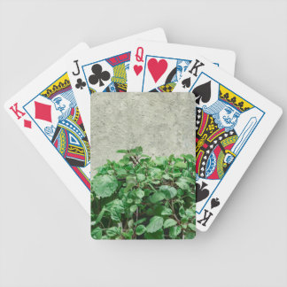 Green Plants Against Concrete Wall Poker Deck