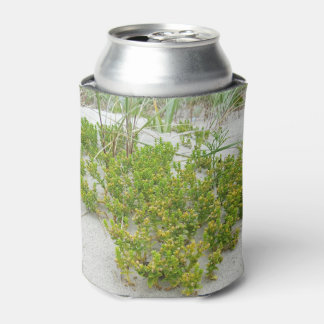Green plants at the beach can cooler