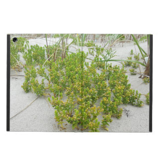 Green plants at the beach cover for iPad air