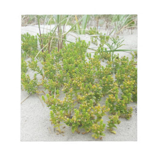 Green plants at the beach notepad