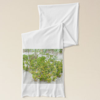 Green plants at the beach scarf