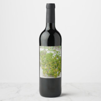 Green plants at the beach wine label