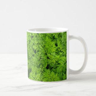 Green Plants Fern Foliage Texture Background Basic White Mug