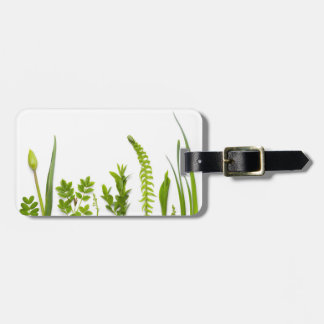 Green Plants Isolated on White Background Luggage Tag