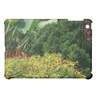 green plants with iPad mini cover
