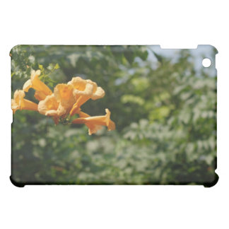 green plants with iPad mini case