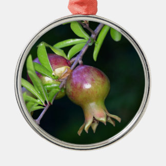 Green pomegranate fruit Silver-Colored round decoration
