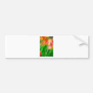 Green Red and Yellow Tulip Sketch Bumper Sticker