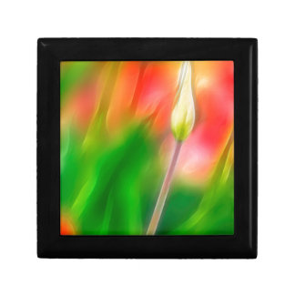 Green Red and Yellow Tulip Sketch Gift Box