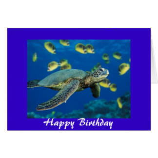 Green Sea Turtle, Happy Birthday Card