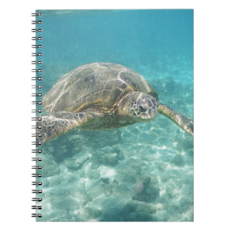 Green Sea Turtle Notebooks
