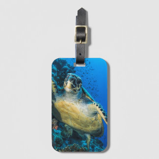 Green Sea Turtle | Red Sea Luggage Tag