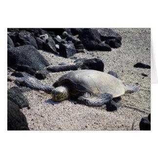 Green Sea Turtle Sunning Itself, Hawaii, Card