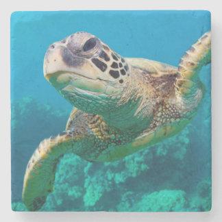 Green Sea Turtle Swimming Over Coral Reef  Hawaii Stone Coaster