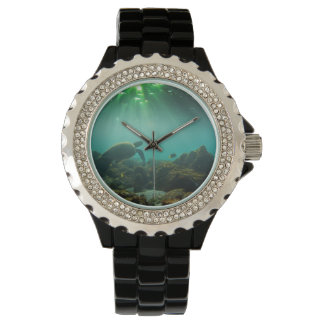 Green sea turtle underwater Galapagos Islands Watch