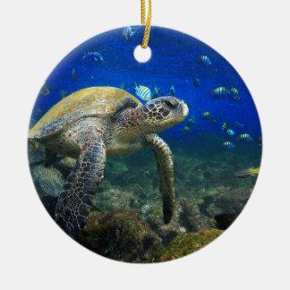 Green sea turtle underwater Galapagos paradise Ceramic Ornament