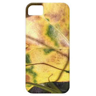 Green speckled yellow leaf in grass cover for iPhone 5/5S