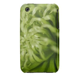 Green Spider Mum iPhone 3 Case-Mate Cases