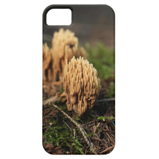 Green staining coral fungi (Ramaria abietina) Barely There iPhone 5 Case