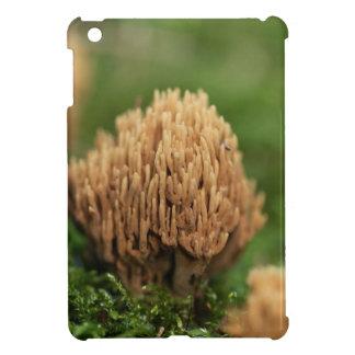 Green staining coral fungi (Ramaria abietina) Case For The iPad Mini