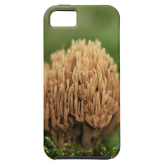 Green staining coral fungi (Ramaria abietina) iPhone 5 Covers