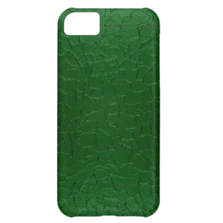 Green Stainless Steel Metal iPhone 5C Case
