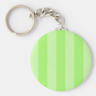 Green Stripes Background Template Color Basic Round Button Key Ring