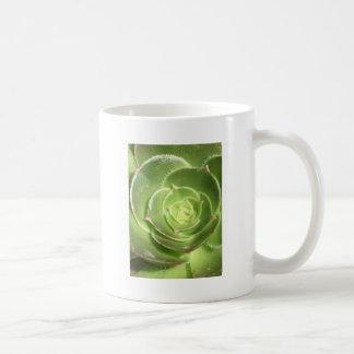 Green succulent coffee mug