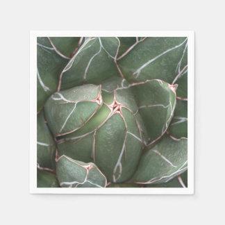 Green Succulent Plant Photo Cocktail Paper Napkins