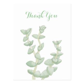 Green Succulent Thank You Postcard