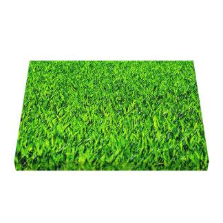 Green Summer Grass Texture Canvas Print