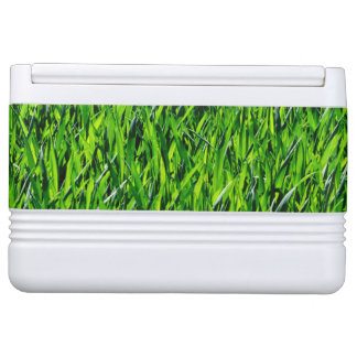 Green Summer Grass Texture Cooler