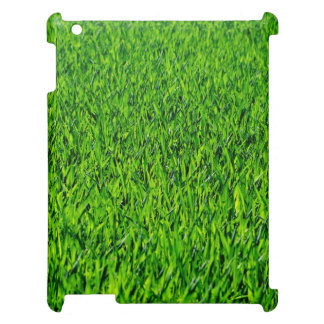 Green Summer Grass Texture Cover For The iPad