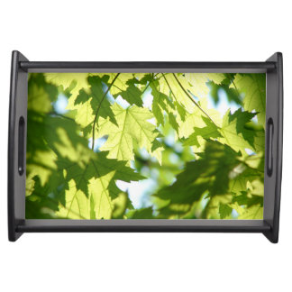Green Summer Maple Leaves Serving Tray