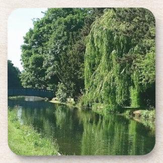 Green sunny spring day green trees river walk coaster
