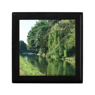 Green sunny spring day green trees river walk small square gift box