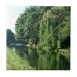 Green sunny spring day green trees river walk small square tile