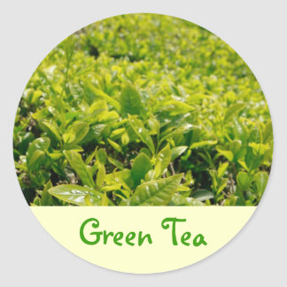 Green Tea Round Sticker