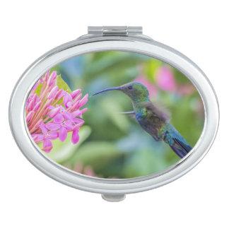 Green Throated Carib Hummingbird Compact Mirror