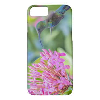 Green Throated Carib Hummingbird iPhone 7 Case
