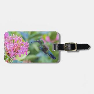 Green Throated Carib Hummingbird Luggage Tag