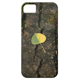 Green to Gold Leaf iPhone 5 Cases