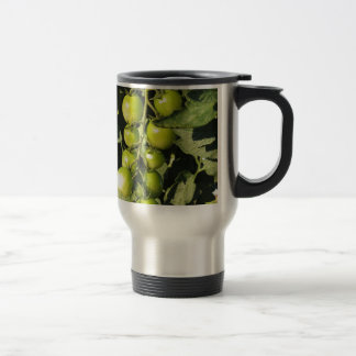 Green tomatoes hanging on the plant in the garden travel mug