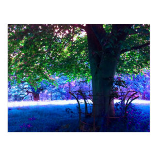 Green Tree Blue Grass Postcard
