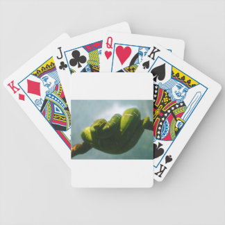 Green Tree Boa Bicycle Playing Cards