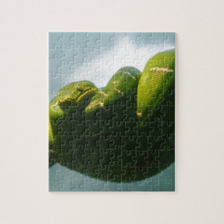 Green Tree Boa Puzzle