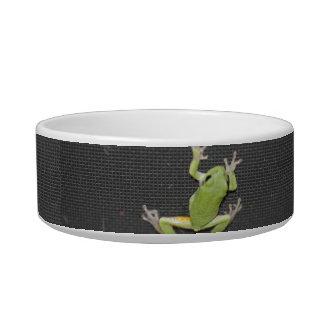 Green Tree Frog Cat Dish Cat Food Bowls