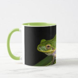 Green Tree Frog (Hyla cinerea) 2 Mug